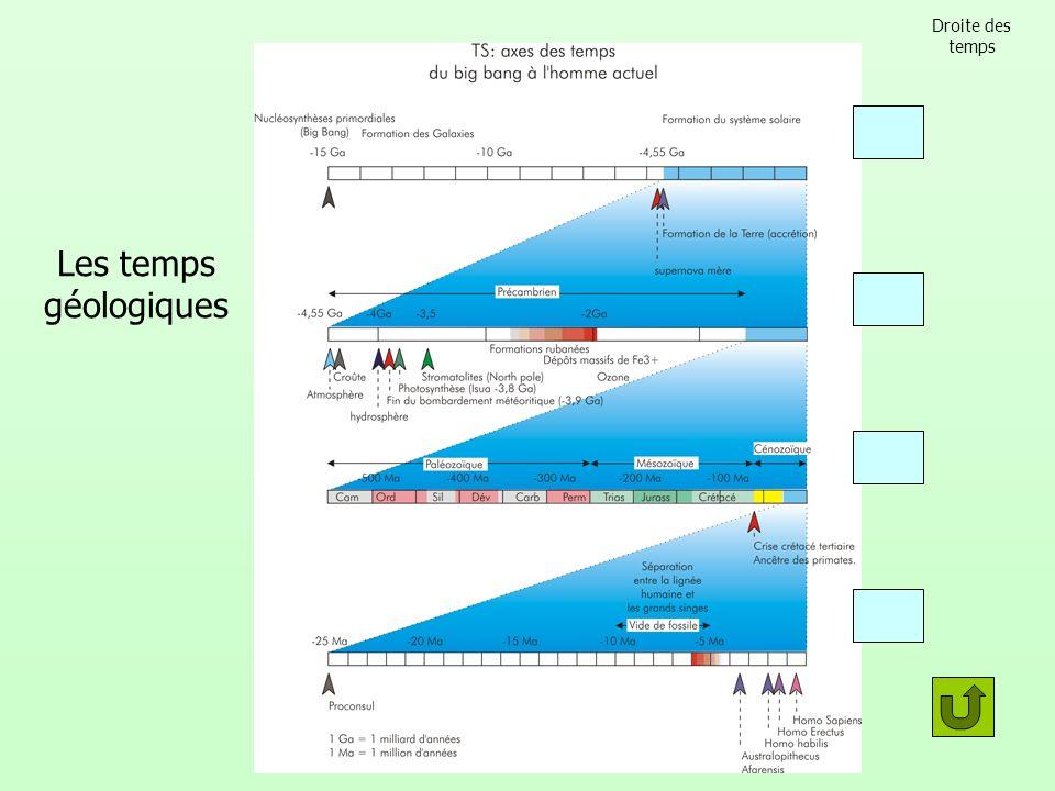 Droite des temps Les temps géologiques