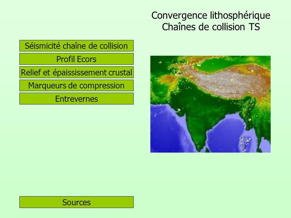 Convergence lithosphérique Chaînes de collision TS Sources Profil Ecors Séismicité chaîne de collision Relief et épaississement crustal Marqueurs de c