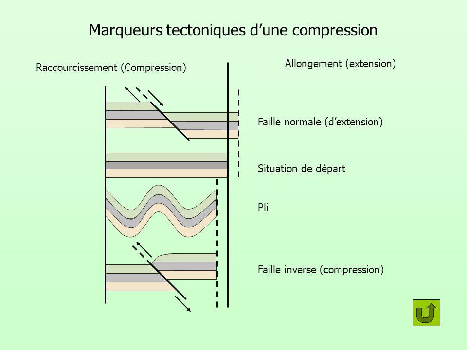 Marqueurs tectoniques dune compression Faille normale (dextension) Situation de départ Pli Faille inverse (compression) Raccourcissement (Compression)