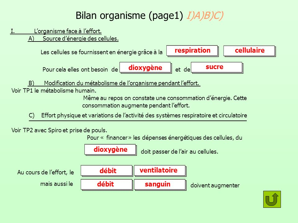 Bilan organisme (page1) I)A)B)C) I. Lorganisme face à leffort. A) Source dénergie des cellules. Les cellules se fournissent en énergie grâce à la Pour