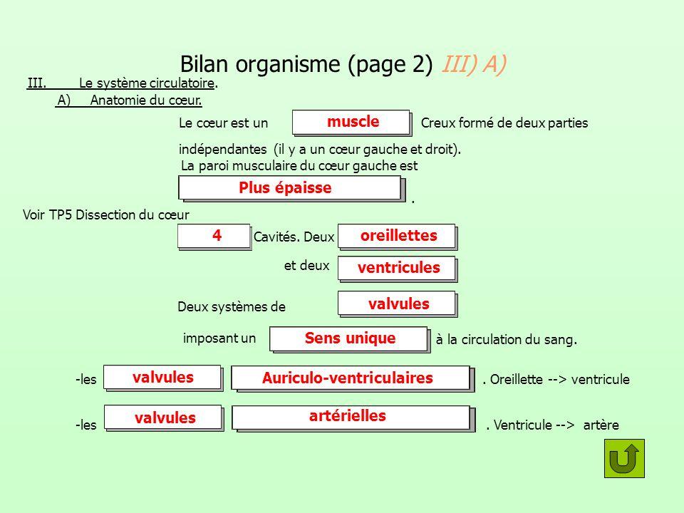 Bilan organisme (page 2) III) A) III. Le système circulatoire. A) Anatomie du cœur. Le cœur est unCreux formé de deux parties indépendantes (il y a un