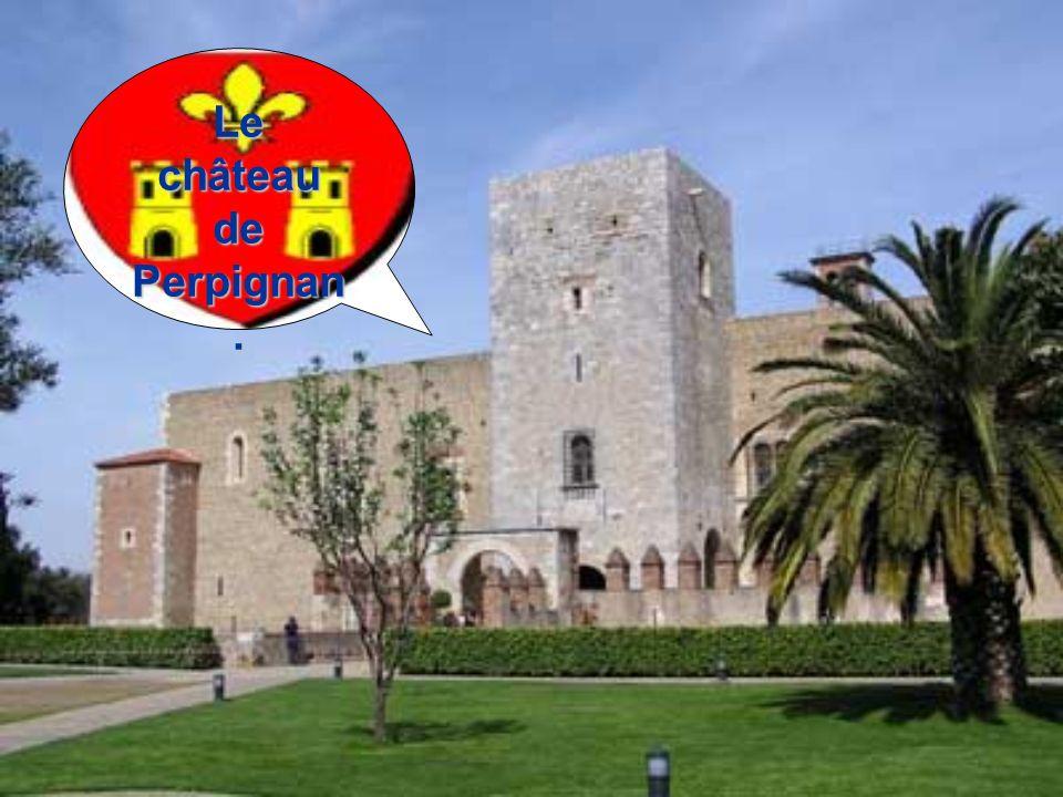 Le château de Perpignan.