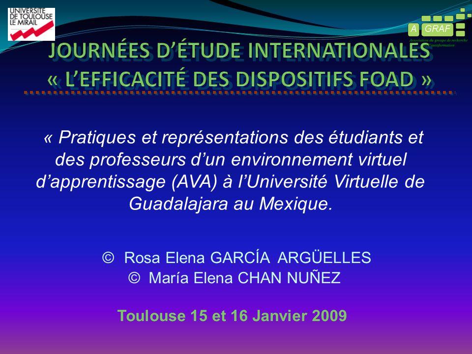 © Rosa Elena GARCÍA ARGÜELLES © María Elena CHAN NUÑEZ Toulouse 15 et 16 Janvier 2009 « Pratiques et représentations des étudiants et des professeurs