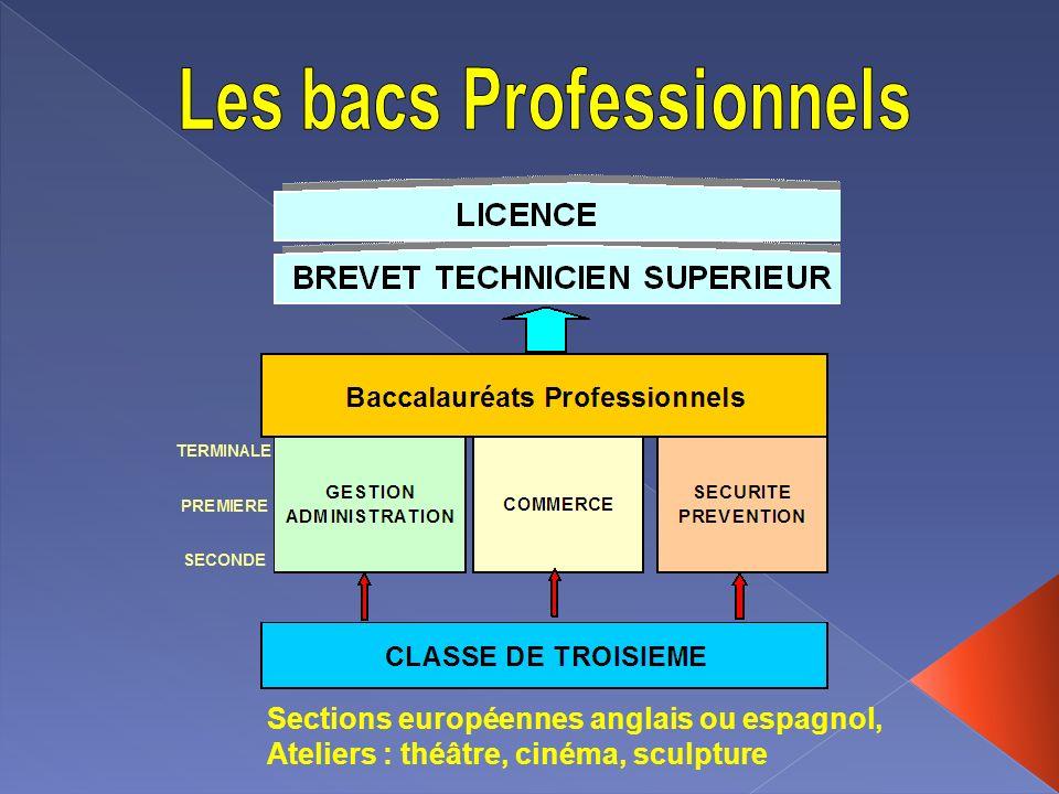 Sections européennes anglais ou espagnol, Ateliers : théâtre, cinéma, sculpture
