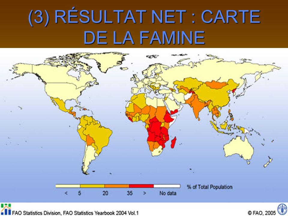 (3) RÉSULTAT NET : CARTE DE LA FAMINE