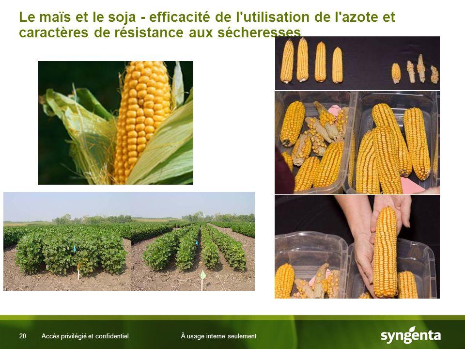 20 Accès privilégié et confidentielÀ usage interne seulement Le maïs et le soja - efficacité de l utilisation de l azote et caractères de résistance aux sécheresses