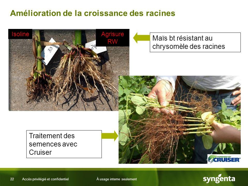 22 Accès privilégié et confidentielÀ usage interne seulement Amélioration de la croissance des racines Agrisure RW Isoline Maïs bt résistant au chryso