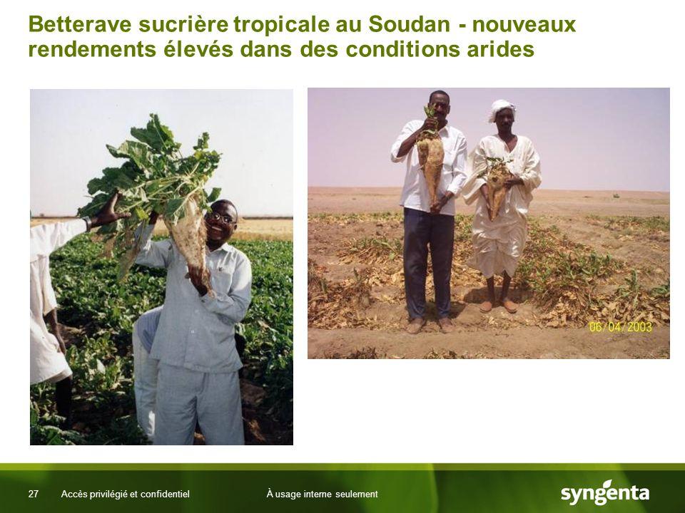 27 Accès privilégié et confidentielÀ usage interne seulement Betterave sucrière tropicale au Soudan - nouveaux rendements élevés dans des conditions a