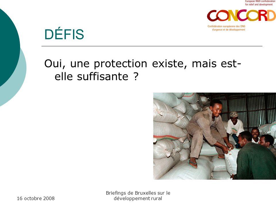 16 octobre 2008 Briefings de Bruxelles sur le développement rural DÉFIS Oui, une protection existe, mais est- elle suffisante ?