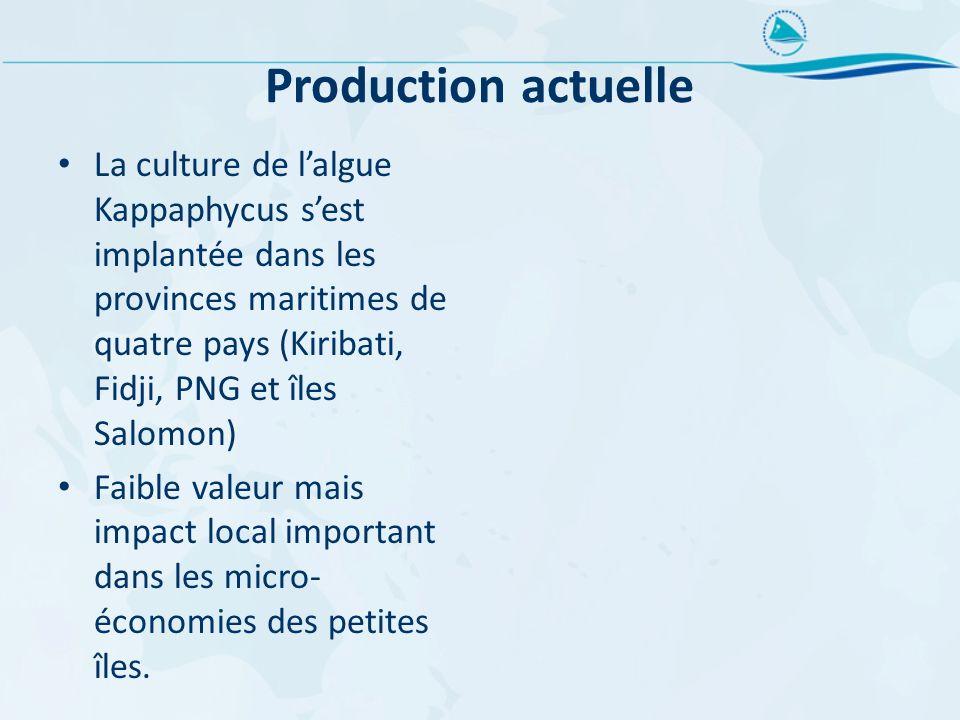 Production actuelle La culture de lalgue Kappaphycus sest implantée dans les provinces maritimes de quatre pays (Kiribati, Fidji, PNG et îles Salomon)