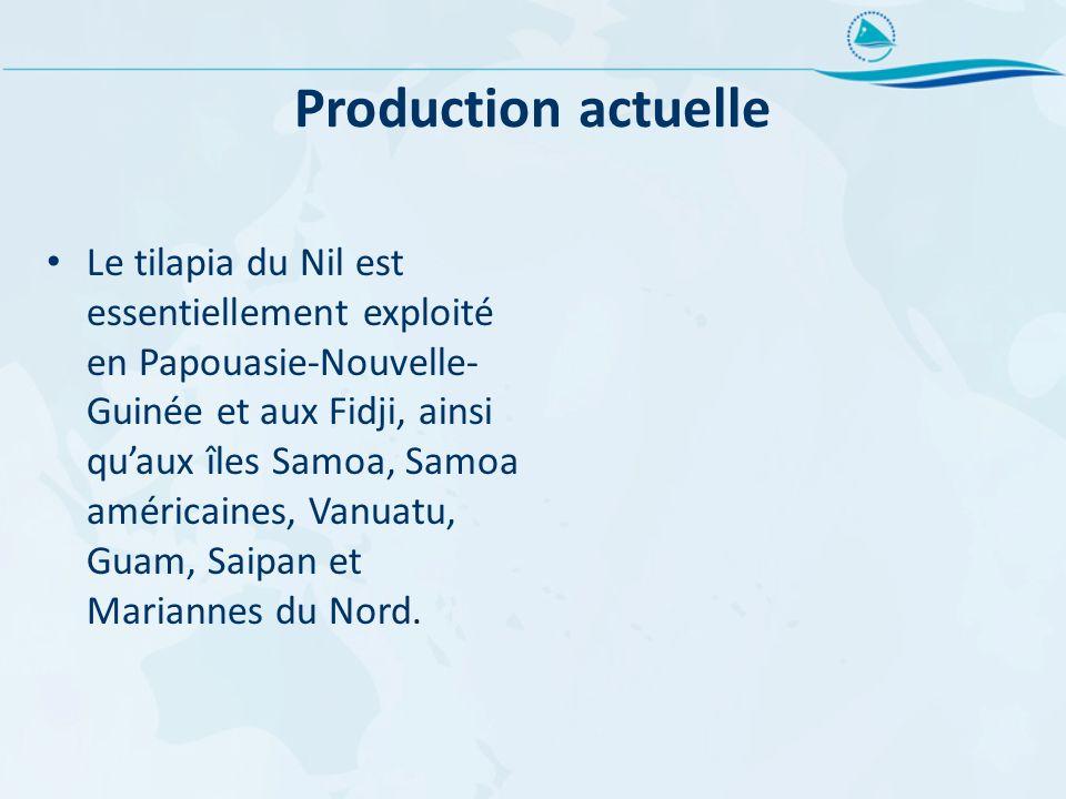 Production actuelle Le tilapia du Nil est essentiellement exploité en Papouasie-Nouvelle- Guinée et aux Fidji, ainsi quaux îles Samoa, Samoa américain