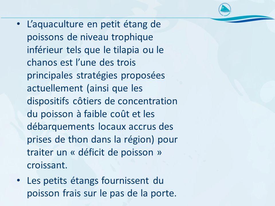 Laquaculture en petit étang de poissons de niveau trophique inférieur tels que le tilapia ou le chanos est lune des trois principales stratégies propo