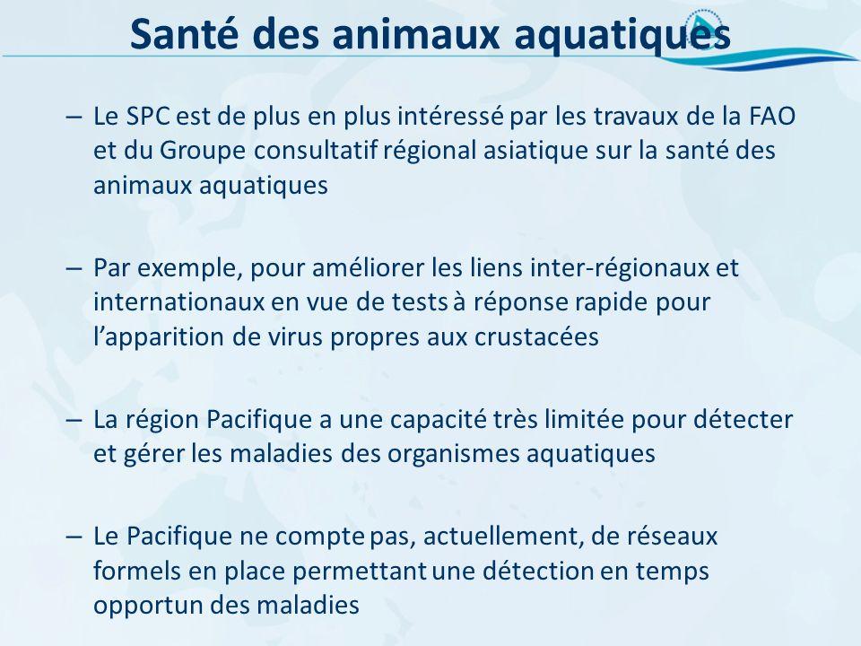 Santé des animaux aquatiques – Le SPC est de plus en plus intéressé par les travaux de la FAO et du Groupe consultatif régional asiatique sur la santé