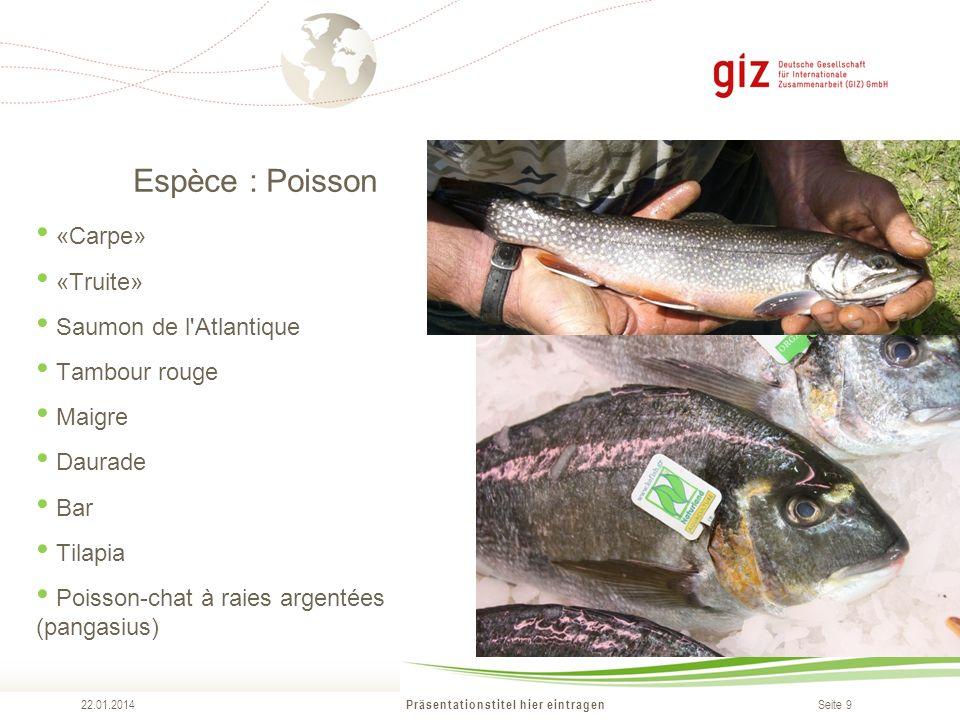 Seite 9 Espèce : Poisson Präsentationstitel hier eintragen 22.01.2014 «Carpe» «Truite» Saumon de l Atlantique Tambour rouge Maigre Daurade Bar Tilapia Poisson-chat à raies argentées (pangasius)