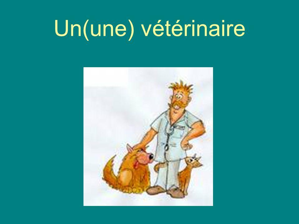 Un(une) vétérinaire