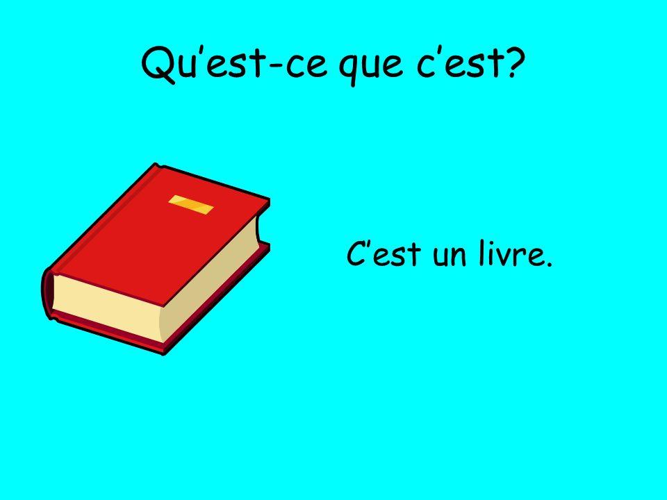 Quest-ce que cest? Cest un livre.