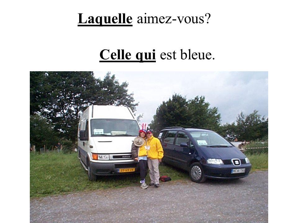 Celui, celle, ceux, celles are never used alone: celui-ci, celui-là (this one, that one) --Ta valise est celle-ci.