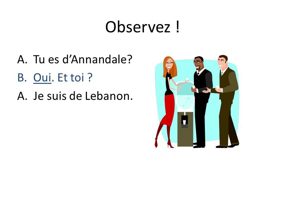 Observez ! A.Tu es dAnnandale? B.Oui. Et toi ? A. Je suis de Lebanon.