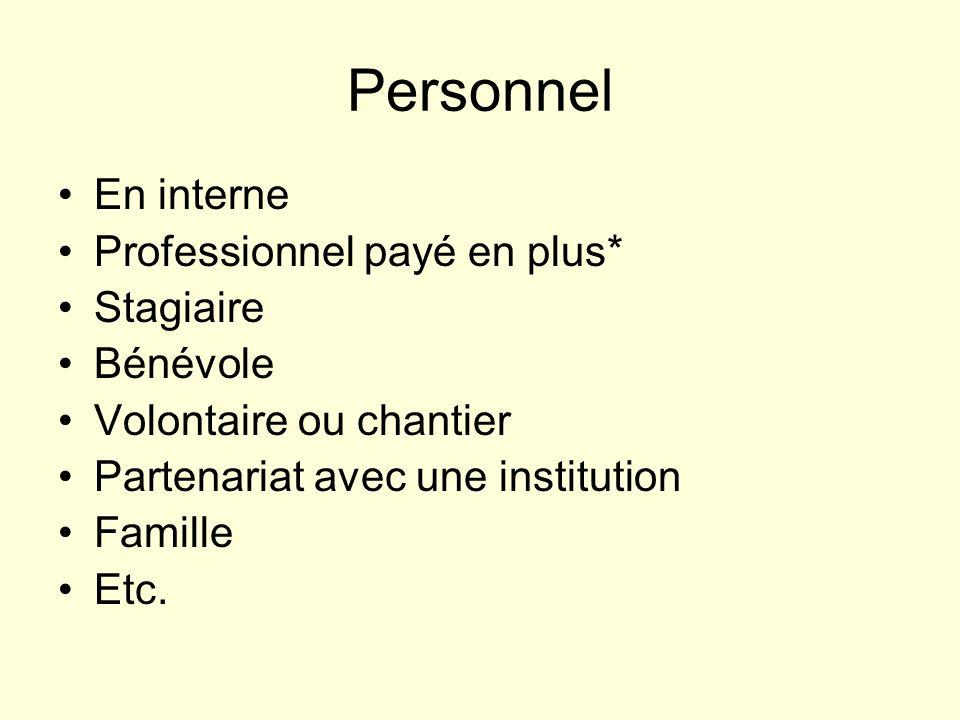 Personnel En interne Professionnel payé en plus* Stagiaire Bénévole Volontaire ou chantier Partenariat avec une institution Famille Etc.