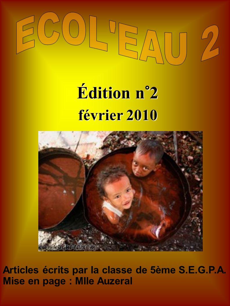 Édition n°2 février 2010 Articles écrits par la classe de 5ème S.E.G.P.A. Mise en page : Mlle Auzeral