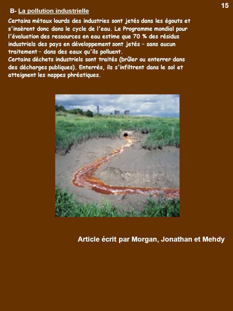 B- La pollution industrielle Certains métaux lourds des industries sont jetés dans les égouts et s'insèrent donc dans le cycle de l'eau. Le Programme