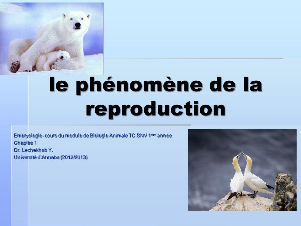 Embryologie- cours du module de Biologie Animale TC SNV 1 ère année Chapitre 1 Dr. Lechekhab Y. Université dAnnaba (2012/2013) le phénomène de la repr