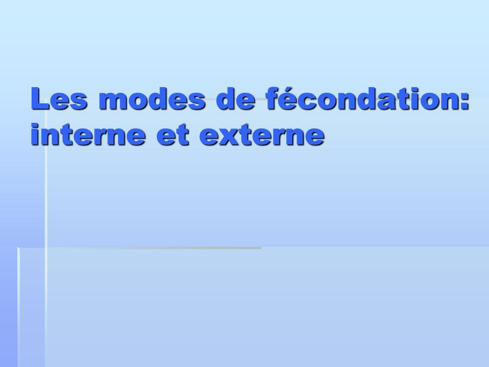 Les modes de fécondation: interne et externe Les modes de fécondation: interne et externe