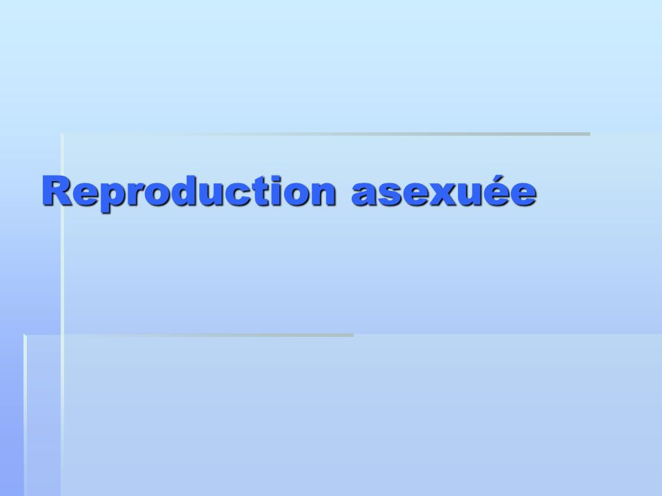 Reproduction asexuée