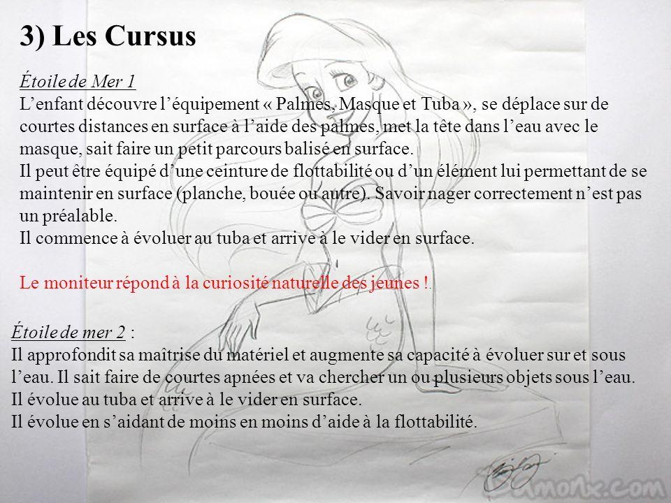 3) Les Cursus Étoile de Mer 1 Lenfant découvre léquipement « Palmes, Masque et Tuba », se déplace sur de courtes distances en surface à laide des palm