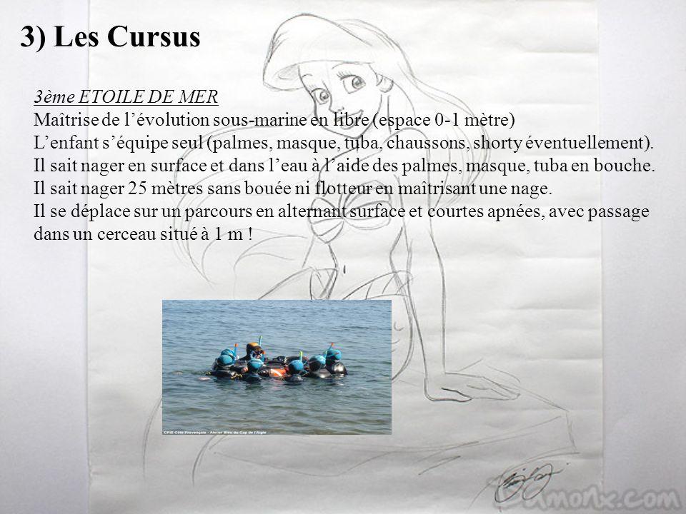 3) Les Cursus 3ème ETOILE DE MER Maîtrise de lévolution sous-marine en libre (espace 0-1 mètre) Lenfant séquipe seul (palmes, masque, tuba, chaussons,