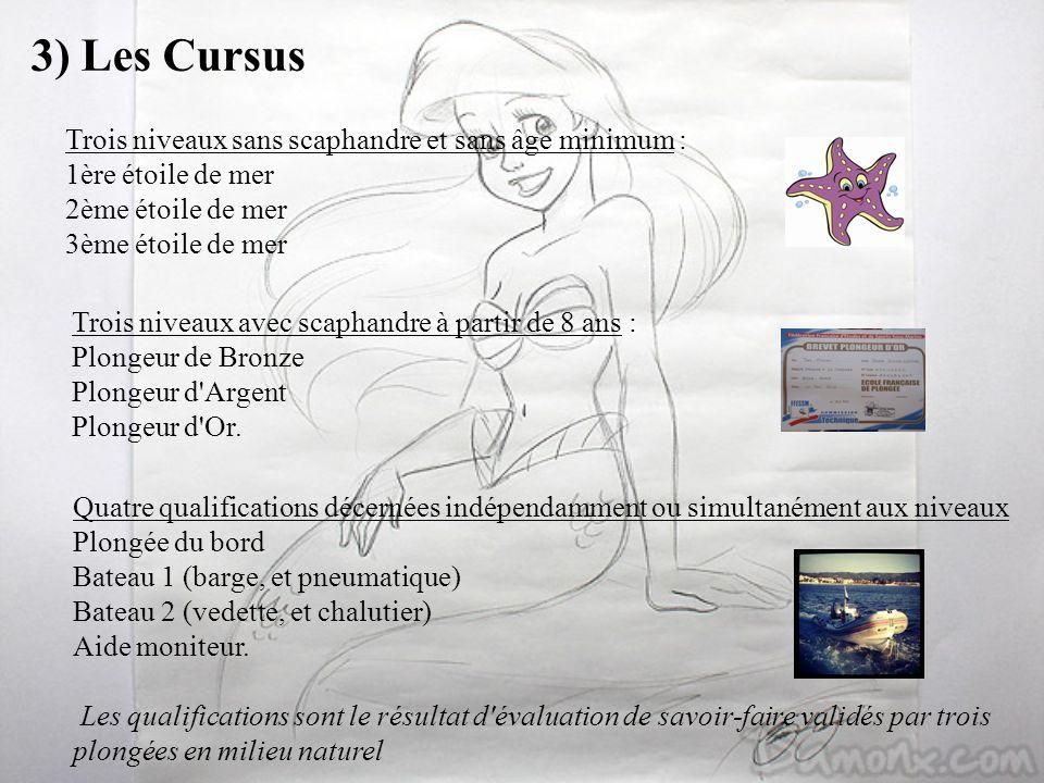 3) Les Cursus Trois niveaux sans scaphandre et sans âge minimum : 1ère étoile de mer 2ème étoile de mer 3ème étoile de mer Trois niveaux avec scaphand