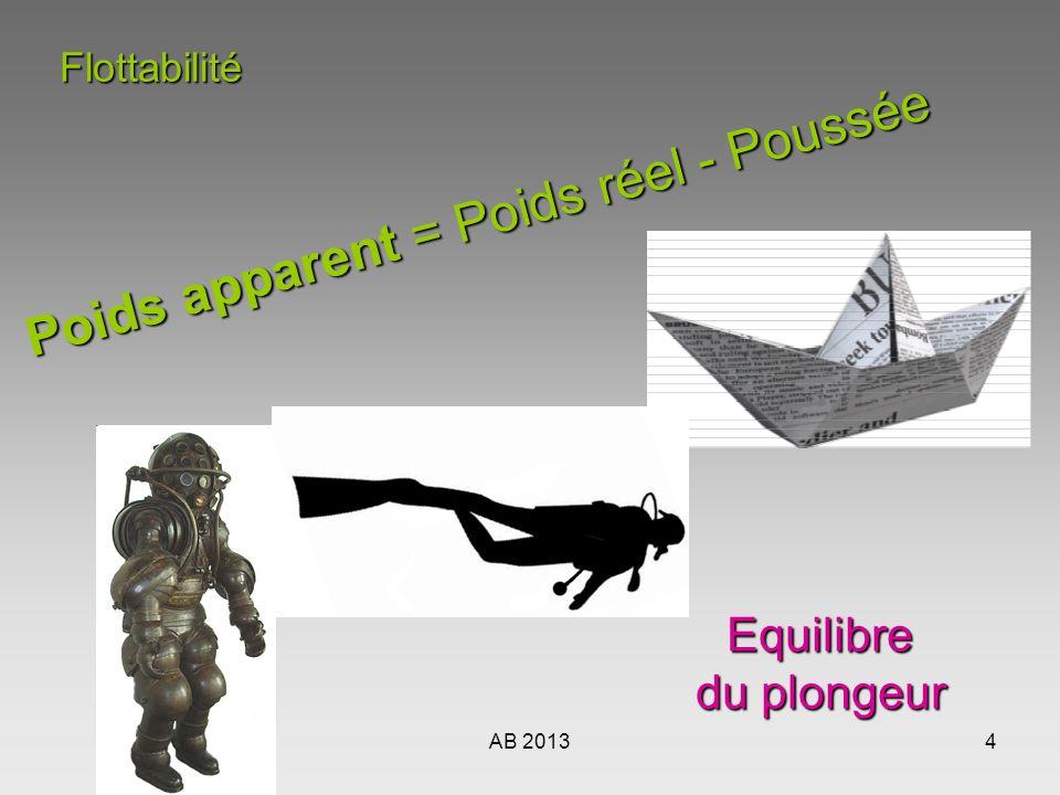 AB 20134Flottabilité Poids apparent = Poids réel - Poussée Equilibre du plongeur du plongeur