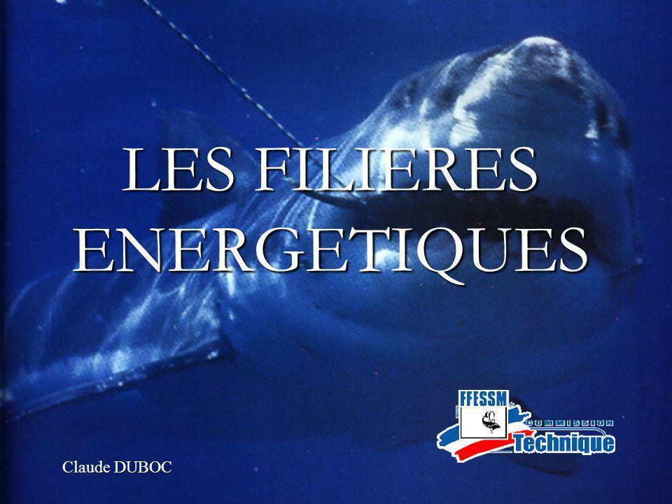 1 LES FILIERES ENERGETIQUES Claude DUBOC