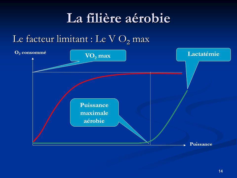 14 La filière aérobie Le facteur limitant : Le V O 2 max VO 2 max O 2 consommé Puissance Puissance maximale aérobie Lactatémie