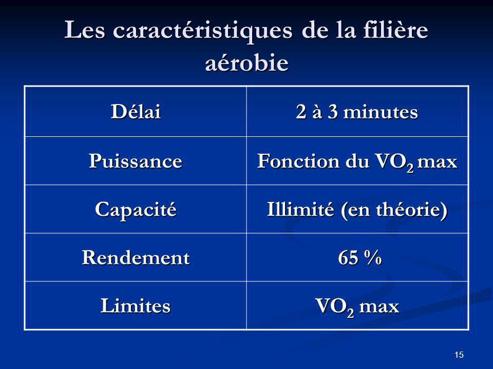 15 Les caractéristiques de la filière aérobie Délai 2 à 3 minutes Puissance Fonction du VO 2 max Capacité Illimité (en théorie) Rendement 65 % 65 % Li