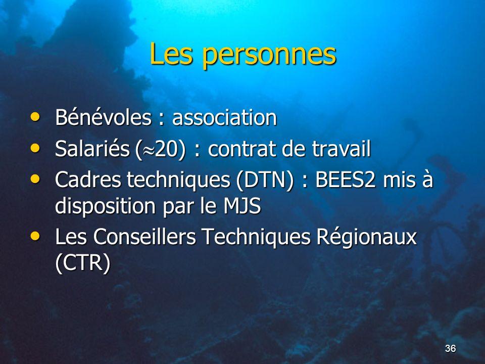 36 Les personnes Bénévoles : association Bénévoles : association Salariés ( 20) : contrat de travail Salariés ( 20) : contrat de travail Cadres techni