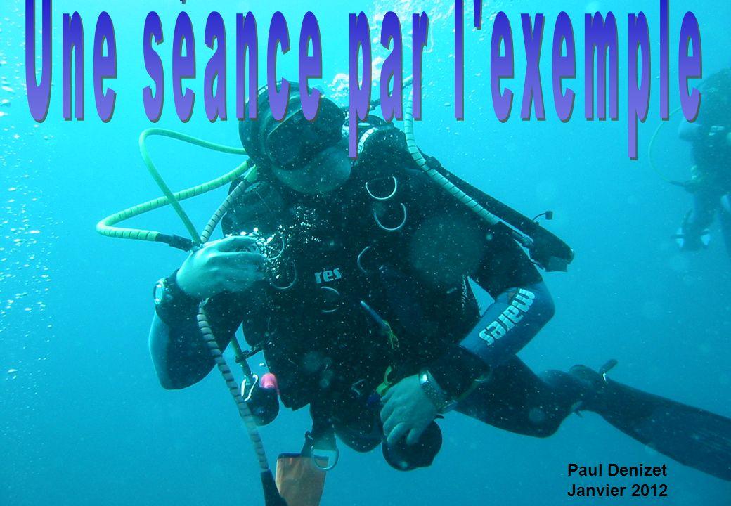 Votre élève prépare le niveau 1 de plongeur.
