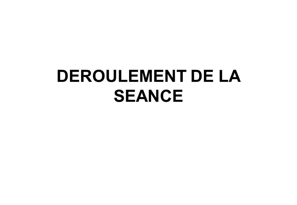 DEROULEMENT DE LA SEANCE