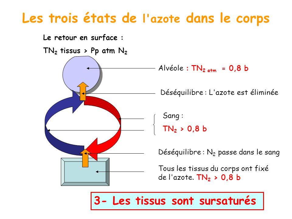 Les trois états de l'azote dans le corps Le retour en surface : TN 2 tissus > Pp atm N 2 3- Les tissus sont sursaturés Tous les tissus du corps ont fi