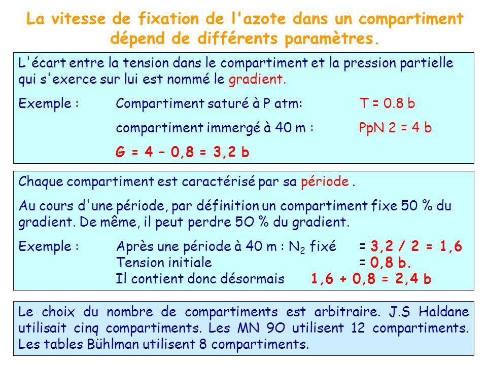 Chaque compartiment est caractérisé par sa période. Au cours d'une période, par définition un compartiment fixe 50 % du gradient. De même, il peut per