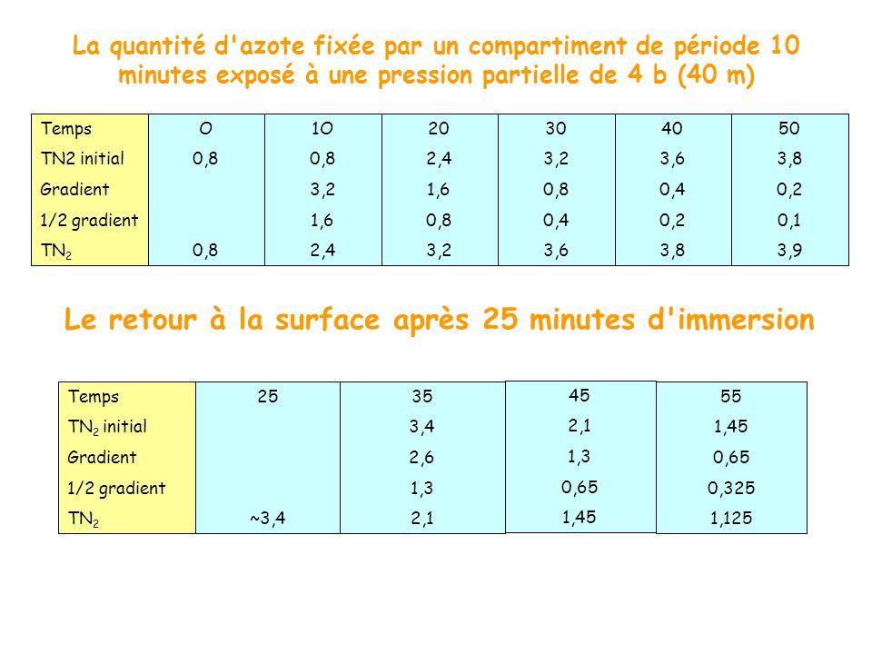 La quantité d'azote fixée par un compartiment de période 10 minutes exposé à une pression partielle de 4 b (40 m) Le retour à la surface après 25 minu