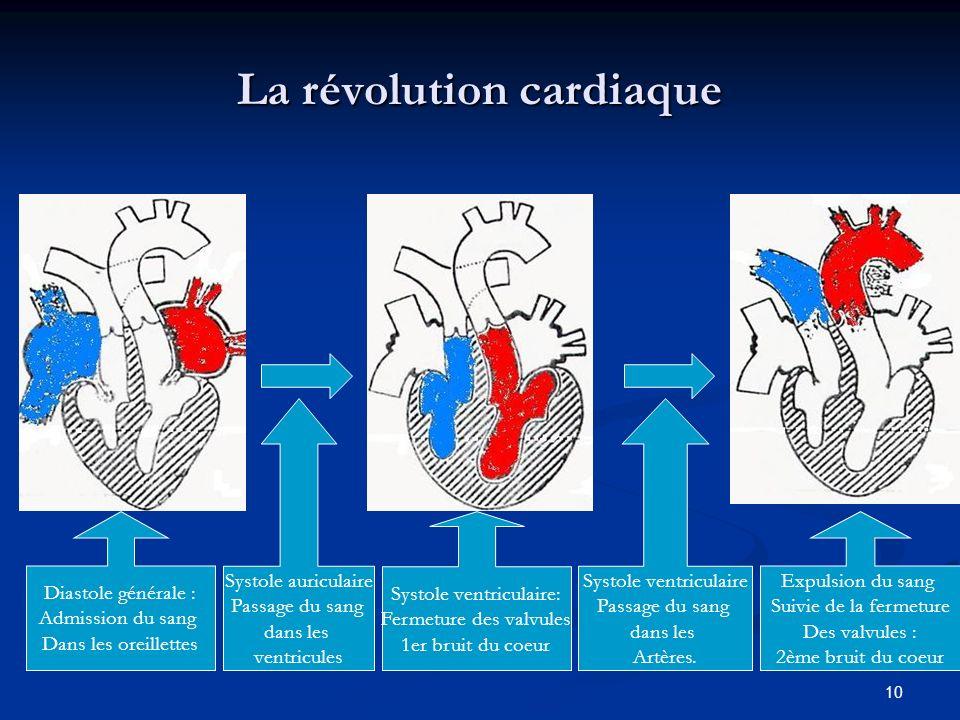 10 La révolution cardiaque Diastole générale : Admission du sang Dans les oreillettes Systole auriculaire Passage du sang dans les ventricules Systole