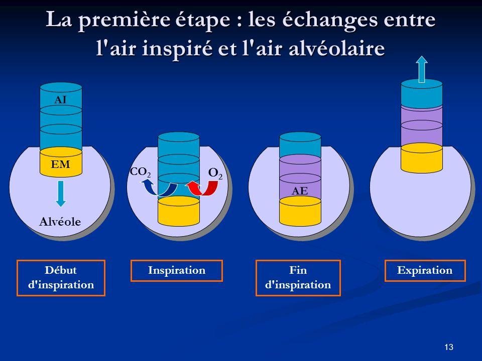 13 La première étape : les échanges entre l'air inspiré et l'air alvéolaire AE Fin d'inspiration Expiration Début d'inspiration AI EM Alvéole Inspirat