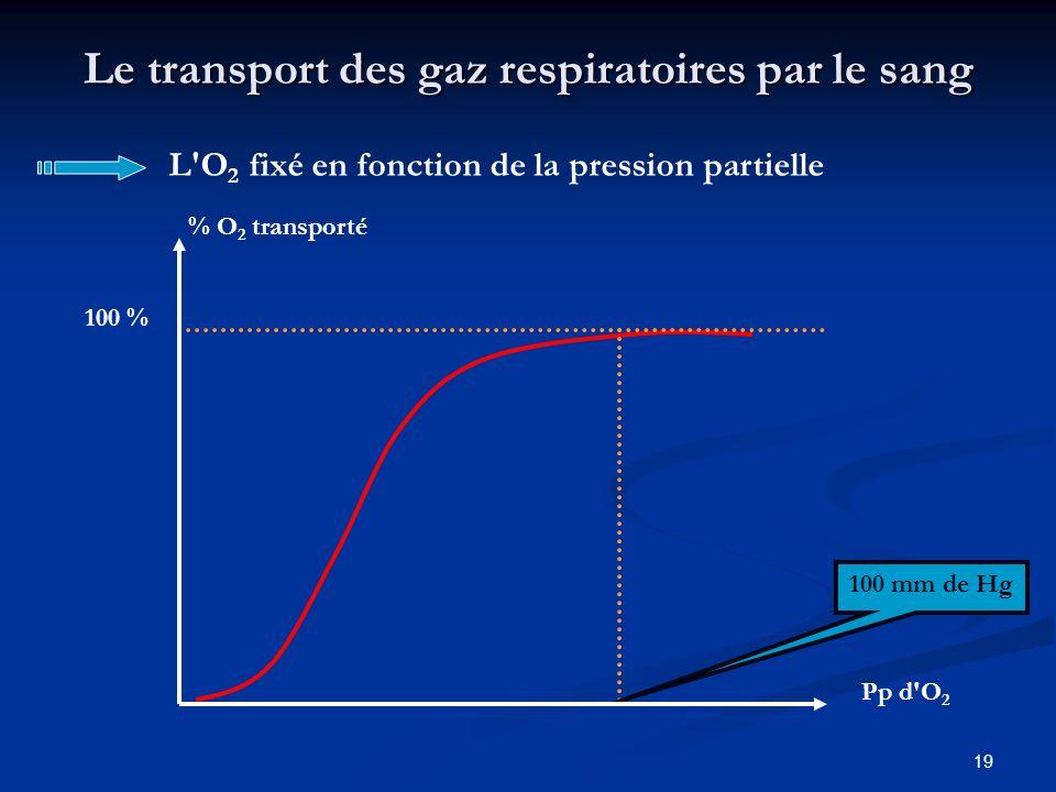 19 Le transport des gaz respiratoires par le sang L'O 2 fixé en fonction de la pression partielle 100 mm de Hg 100 % % O 2 transporté Pp d'O 2