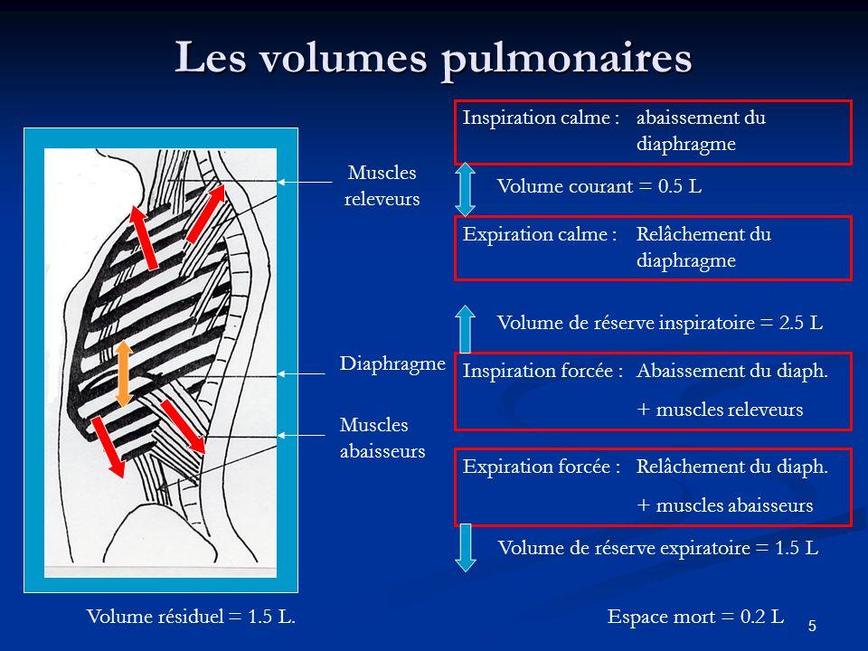 5 Les volumes pulmonaires Muscles abaisseurs Expiration forcée :Relâchement du diaph. + muscles abaisseurs Volume de réserve expiratoire = 1.5 L Muscl