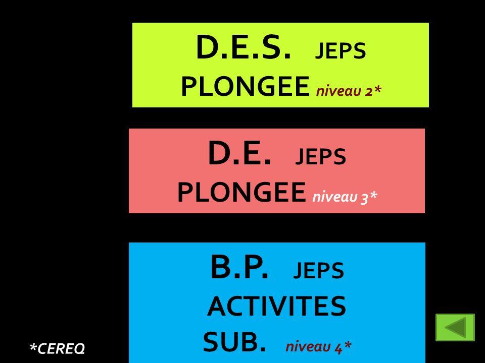 B.P. JEPS ACTIVITES SUB. niveau 4* D.E. JEPS PLONGEE niveau 3* D.E.S. JEPS PLONGEE niveau 2* *CEREQ