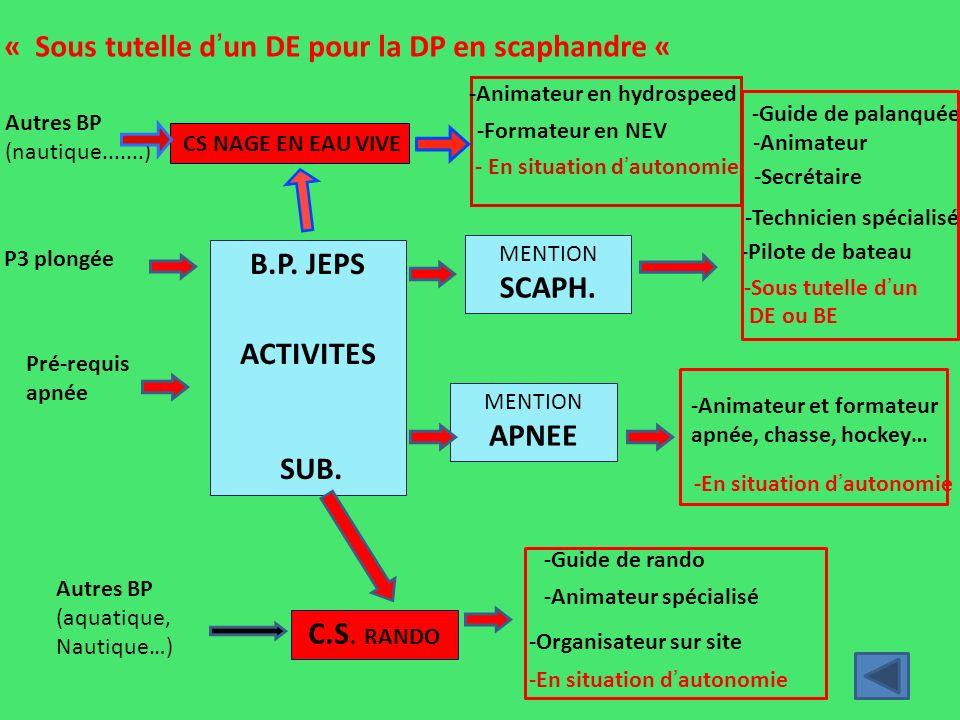 D.E.JEPS PLONGEE C.S. N.A.P. D.E.