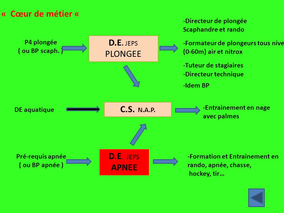 D.E. JEPS PLONGEE C.S. N.A.P. D.E. JEPS APNEE -Directeur de plongée Scaphandre et rando -Formateur de plongeurs tous niveaux (0-60m) air et nitrox -Tu