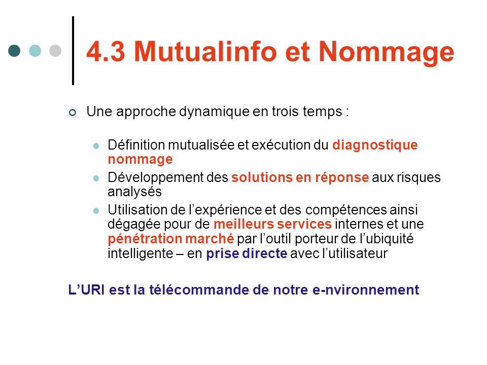 4.3 Mutualinfo et Nommage Une approche dynamique en trois temps : Définition mutualisée et exécution du diagnostique nommage Développement des solutio