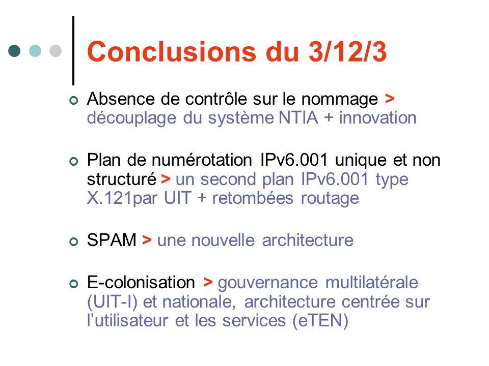 Conclusions du 3/12/3 Absence de contrôle sur le nommage > découplage du système NTIA + innovation Plan de numérotation IPv6.001 unique et non structu
